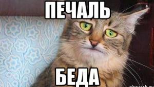 icon.300x170 Случилось страшное   15.10.2015